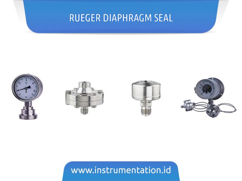 Rueger Diaphragm Seal