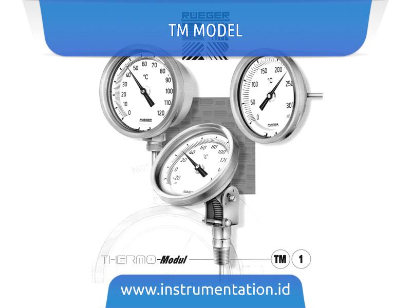 TM Model